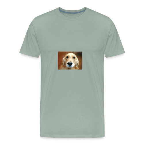 Snapshot 20180127 - Men's Premium T-Shirt