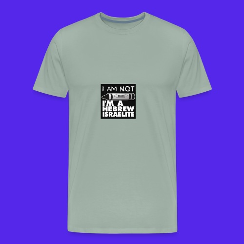 IMG 0359 - Men's Premium T-Shirt
