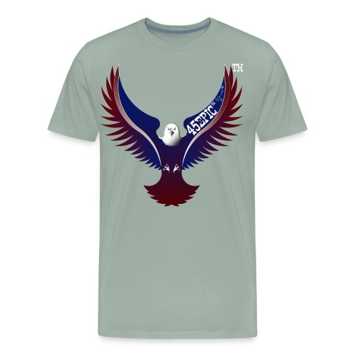 45EPIC EAGLE dx4/dt=ic Elliot McGucken Fine Art TM - Men's Premium T-Shirt