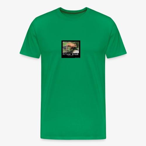 13781980 716246028514413 2277844027986249923 n - Men's Premium T-Shirt
