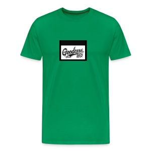 IMG 2199 - Men's Premium T-Shirt