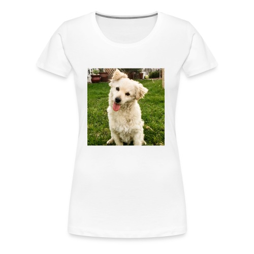 BA9E90F0 30AA 4D72 B5F5 0A56A1418678 - Women's Premium T-Shirt
