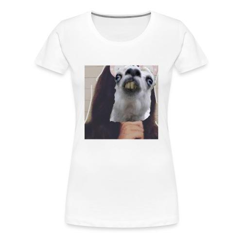 IMG 20180116 212329 638 - Women's Premium T-Shirt