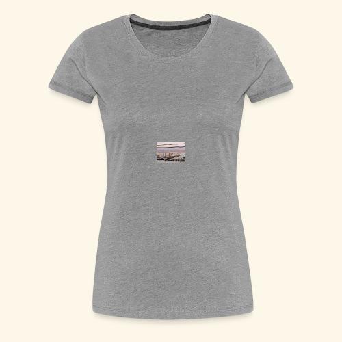 10516750 10102075853529936 355454698054527313 n - Women's Premium T-Shirt
