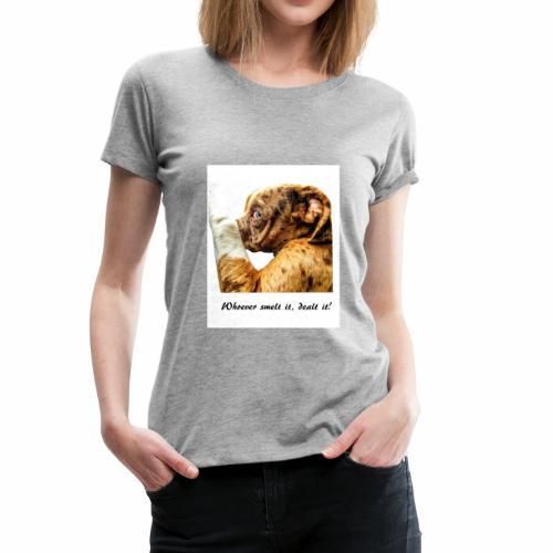 Whoever Smelt it, Dealt it - Women's Premium T-Shirt
