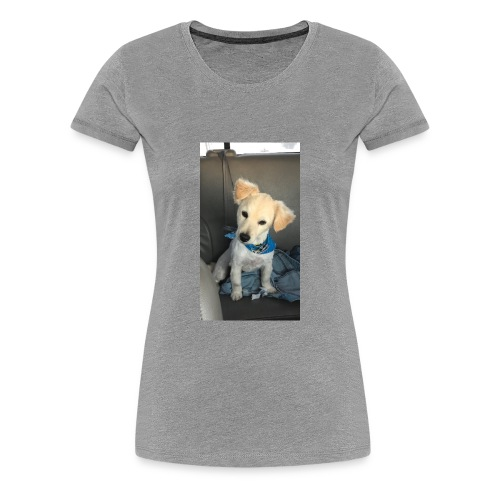 33C52F30 7C57 41AD B7E2 DC7368AD65AC - Women's Premium T-Shirt