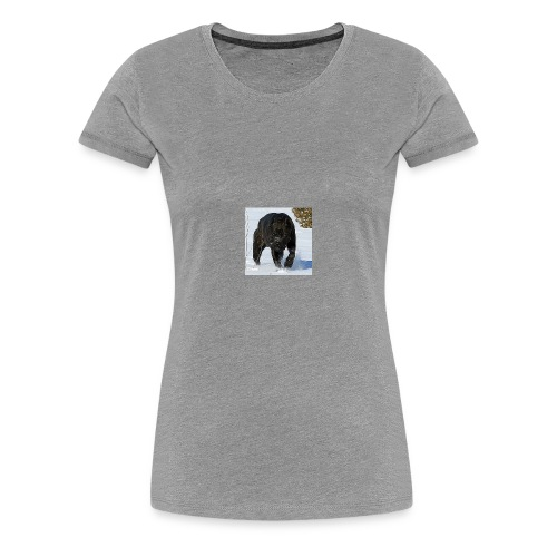 received 223341231819445 - Women's Premium T-Shirt