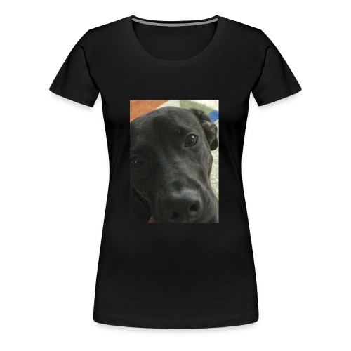 Lab - Women's Premium T-Shirt