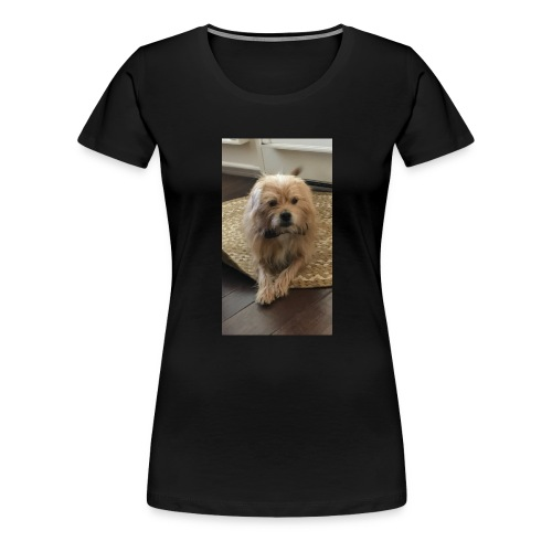 The Andy - Women's Premium T-Shirt