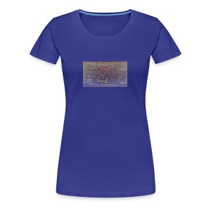 kiik 4 - Women's Premium T-Shirt