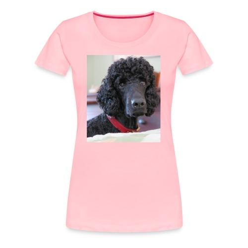 Phineas - Women's Premium T-Shirt