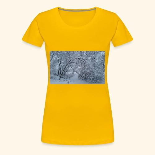 20170310 072946 - Women's Premium T-Shirt
