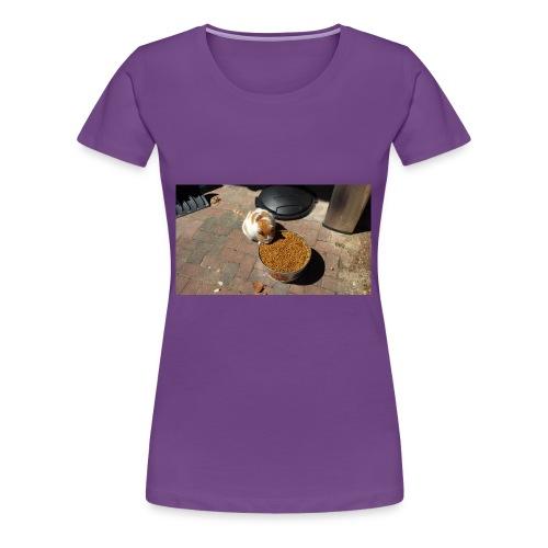 Hungry cat - Women's Premium T-Shirt