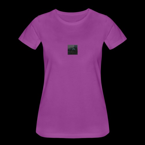 Bigbrother646 - Women's Premium T-Shirt