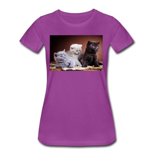 The 3 little kittens - Women's Premium T-Shirt