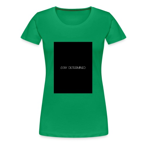 PicsArt 12 21 01 41 25 - Women's Premium T-Shirt