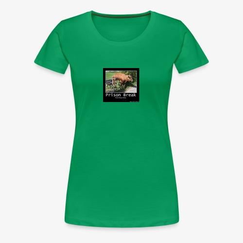 13781980 716246028514413 2277844027986249923 n - Women's Premium T-Shirt