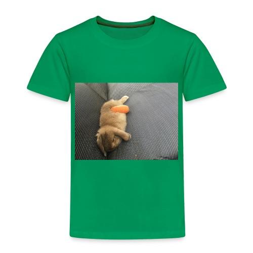 Rabbit T-Shirts - Toddler Premium T-Shirt