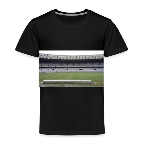 casa do mair de minas mineirao mg cruzeiro - Toddler Premium T-Shirt