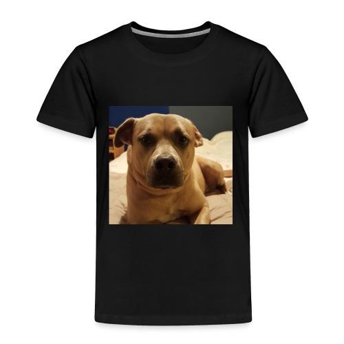 Linus1 - Toddler Premium T-Shirt