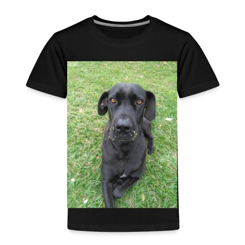 Dasher - Toddler Premium T-Shirt