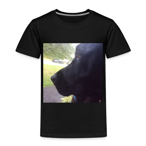 Casey And The Window - Toddler Premium T-Shirt