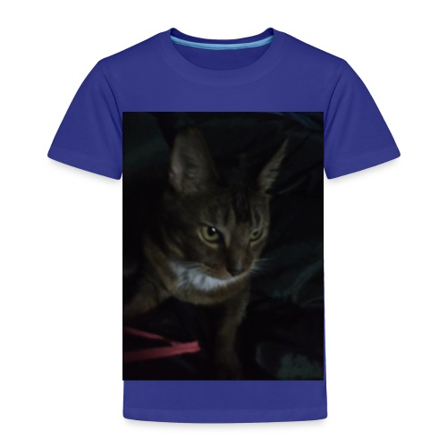 IMG_20161125_193632 - Toddler Premium T-Shirt