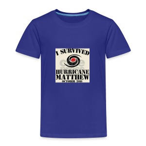 Matthew T-shirts - Toddler Premium T-Shirt