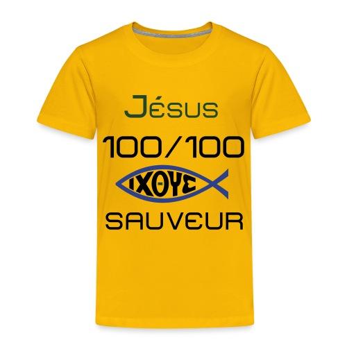 jesus100 - Toddler Premium T-Shirt