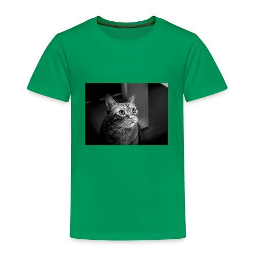 27144721150 c95db364a9 z - Toddler Premium T-Shirt