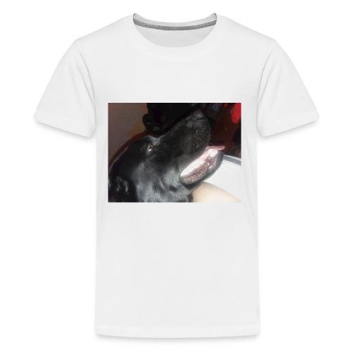 20180219 204526 - Kids' Premium T-Shirt
