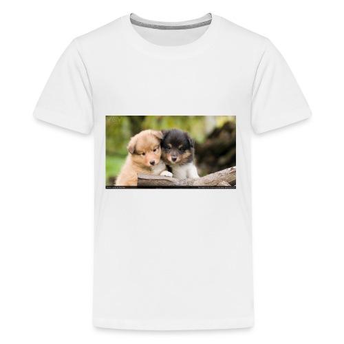 sheltie puppies 371070 - Kids' Premium T-Shirt