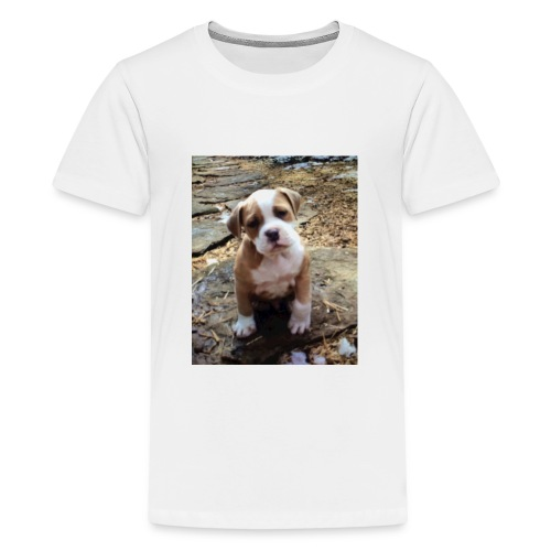 IMG_6105 - Kids' Premium T-Shirt