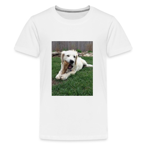 D29839C9 C526 4254 9BC0 29987806DC45 - Kids' Premium T-Shirt