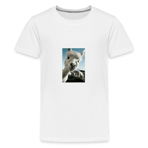 3b4675b3f248ec66334b5254a286d5e1 - Kids' Premium T-Shirt