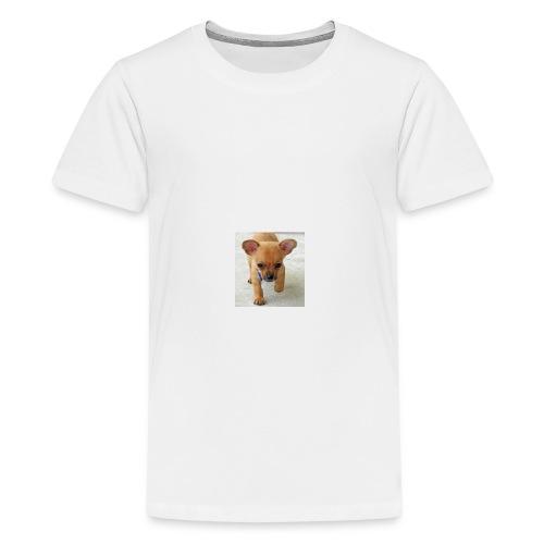 chihuahua shirt - Kids' Premium T-Shirt