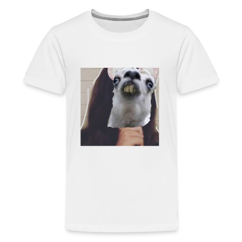 IMG 20180116 212329 638 - Kids' Premium T-Shirt