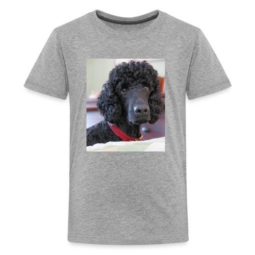 Phineas - Kids' Premium T-Shirt