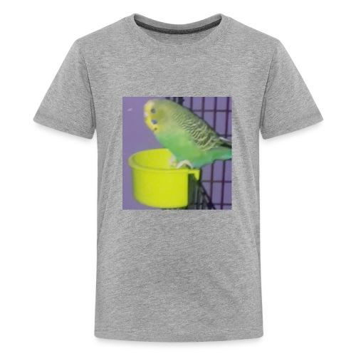 Boo-Boos Tee - Kids' Premium T-Shirt