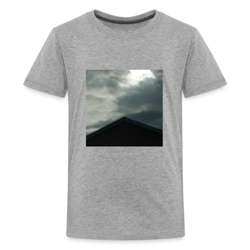 IMG 20170512 204404 760 - Kids' Premium T-Shirt
