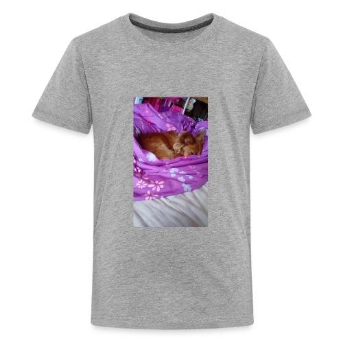 IMG 20180708 091747 - Kids' Premium T-Shirt