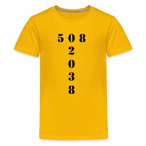 508 02038 franklin area/zip code - Kids' Premium T-Shirt