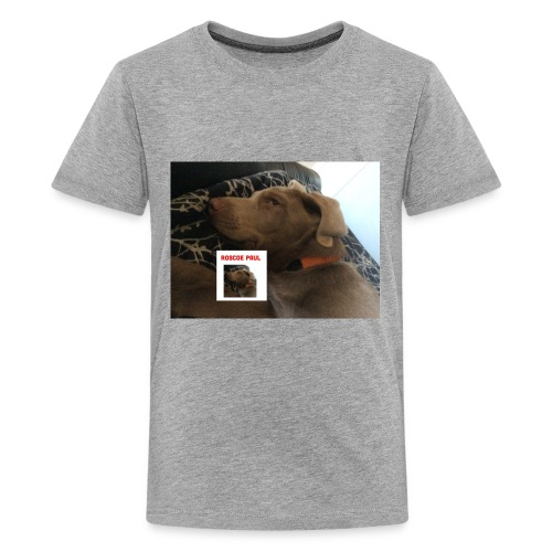 Finn Update - Kids' Premium T-Shirt