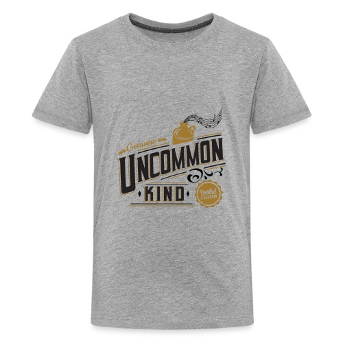 Apparel 4200 x 4800 - Kids' Premium T-Shirt