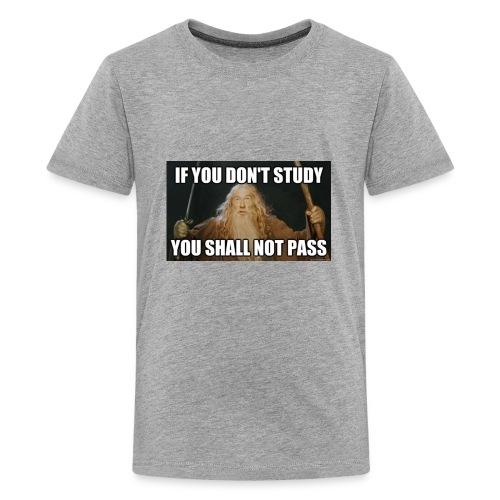 The meme shirt - Kids' Premium T-Shirt