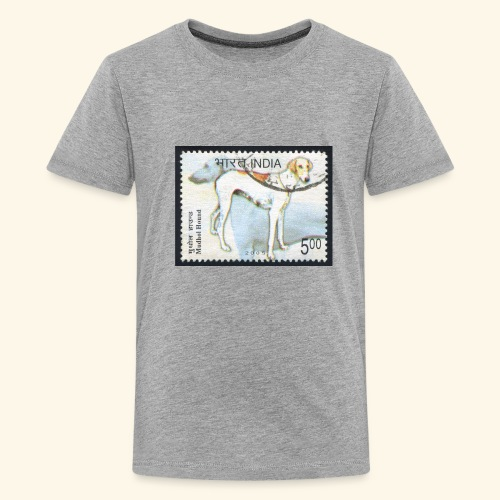 India - Mudhol Hound - Kids' Premium T-Shirt