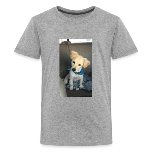33C52F30 7C57 41AD B7E2 DC7368AD65AC - Kids' Premium T-Shirt