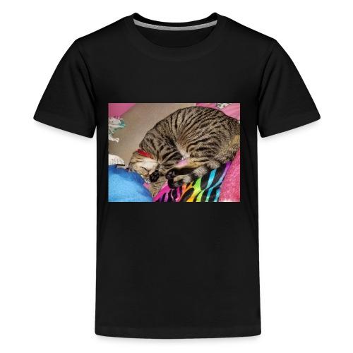 15105224081511728716942 - Kids' Premium T-Shirt