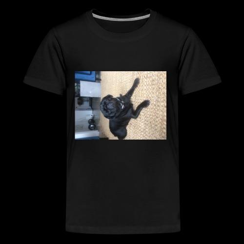 9B0F12D5 E6D9 4863 88E1 9F28BF986F3C - Kids' Premium T-Shirt