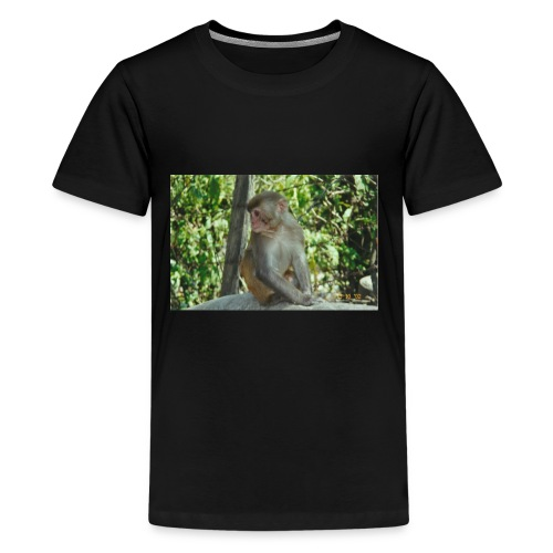 the monkey picture - Kids' Premium T-Shirt